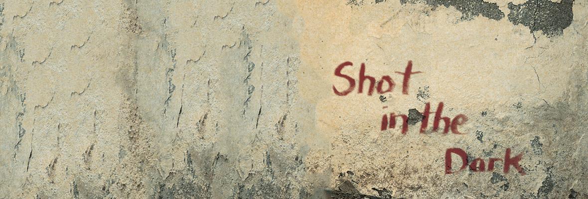 shotinthedark11